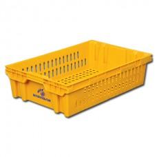 Ящик пластиковый хлебный 403П 60х40х15см цветной